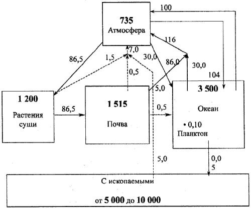 Схема круговорота углерода в биосфере.